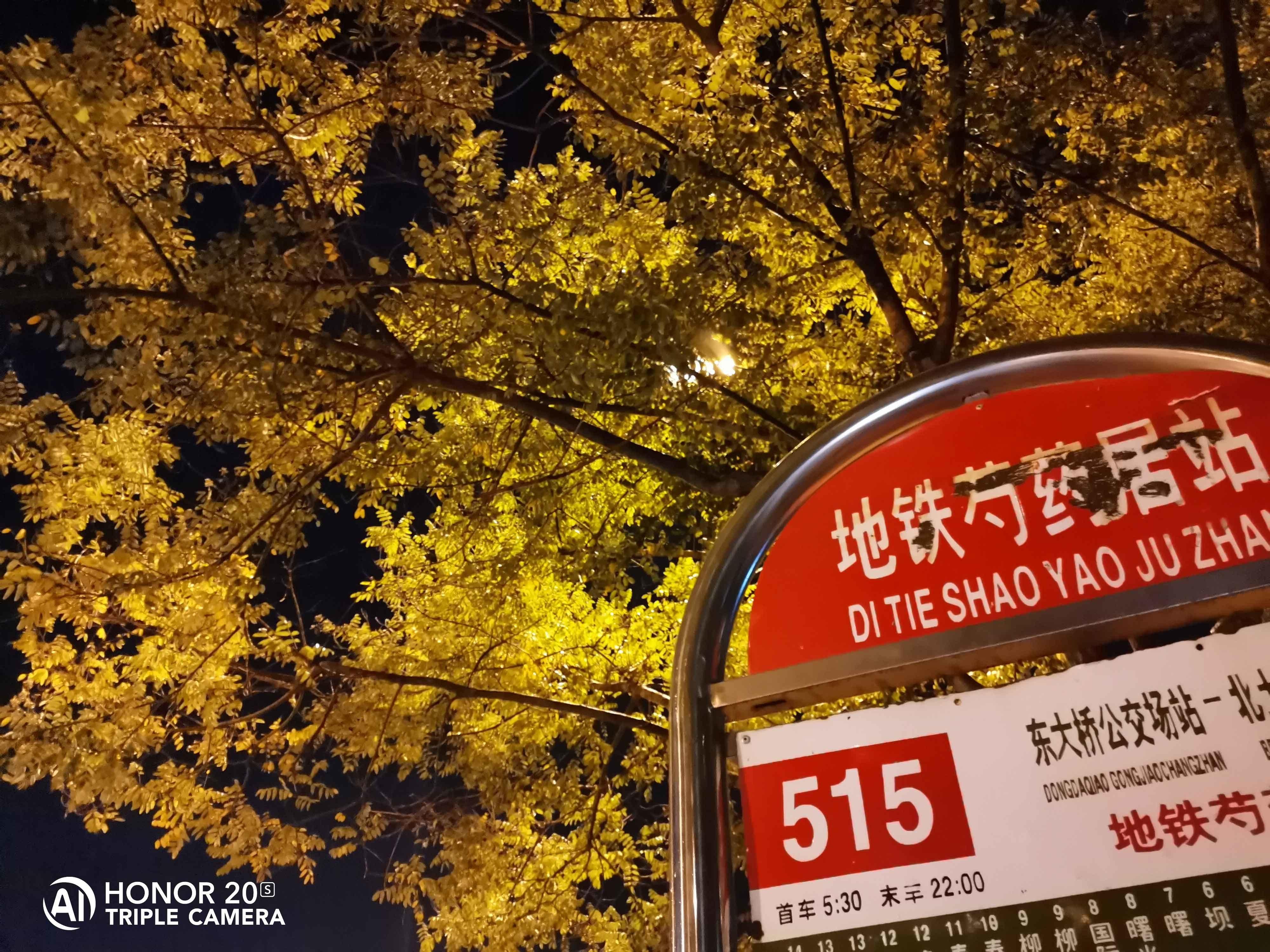 荣耀20S(6+128GB)手机拍照出来的影像图第5张